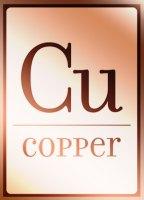 Copper Bistro