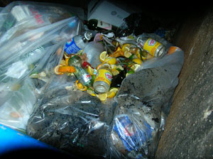 dumpster_300