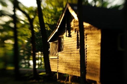 Summer Camp cabin