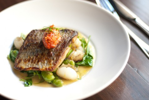 "Oyster House ""Seared Shad"" dish – photo credit Eric Stabach"