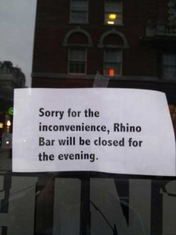 rhino-closed-evening