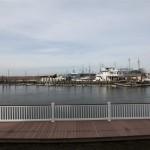 Sea Isle Bayfront Property