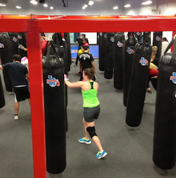 Just Opened: LA Boxing in Springfield - Philadelphia Magazine