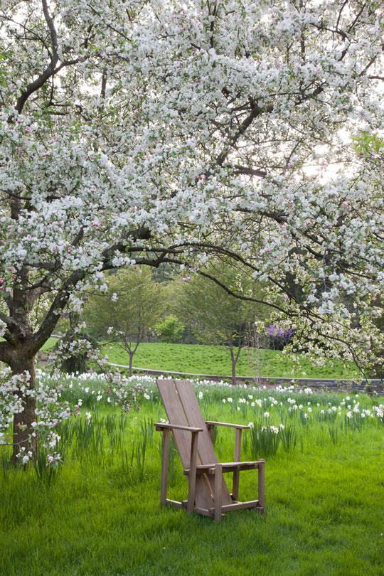 Photo of Chanticleer by Lisa Roper via Chanticleer Garden