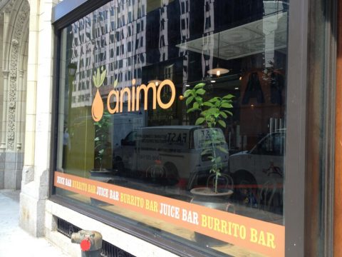 animo-juice-window