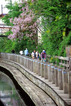 Manayunk Canal Towpath // Photo by B. Krist for GPTMC