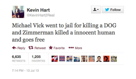 Michael Vick went to jail for killing a DOG and Zimmerman killed a innocent human and goes free