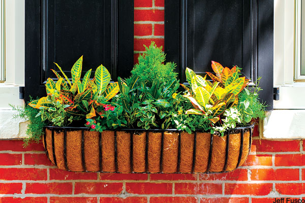 The Online Gardener Philly Facades