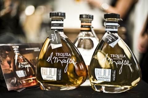 tequila-el-mayors
