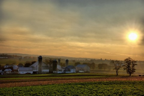 lancaster-farm