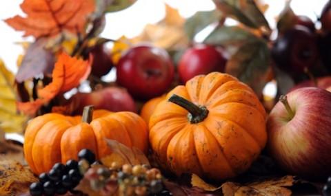 fallharvest
