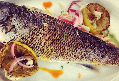 sabatino-morgans-pier-whole-fish