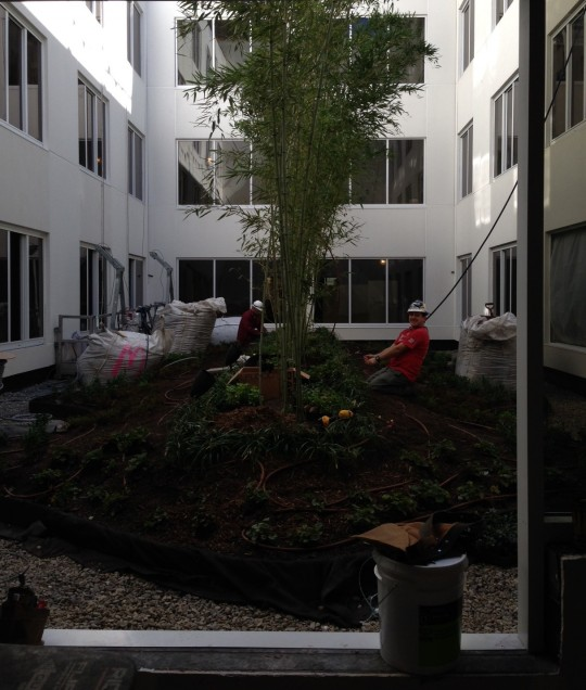 courtyard of new Doubletree Hilton extended stay