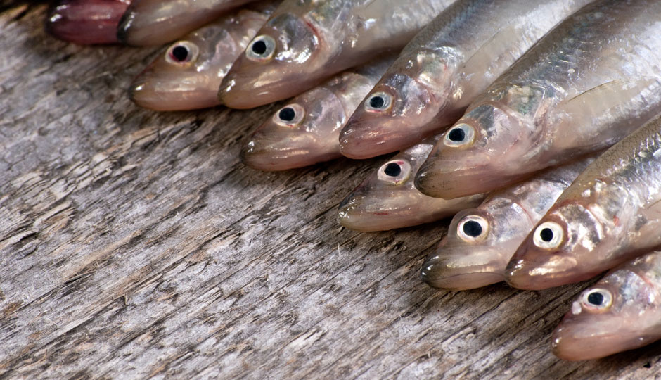 seven-fishes-smelts-940