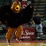 Nov 28, 2013; Orlando, FL, USA; Saint Joseph's Hawks mascot. The Hawk, during the second half against the LSU Tigers at ESPN Wide World of Sports. LSU Tigers defeated the Saint Joseph's Hawks 82-65. Photo | Kim Klement-USA TODAY Sports