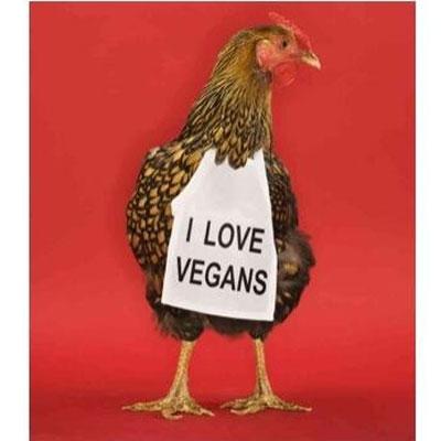 i-love-vegans-400