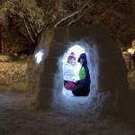 rosemont igloo