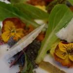 living-salad-volver-940