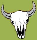 pistolas_skull (1)