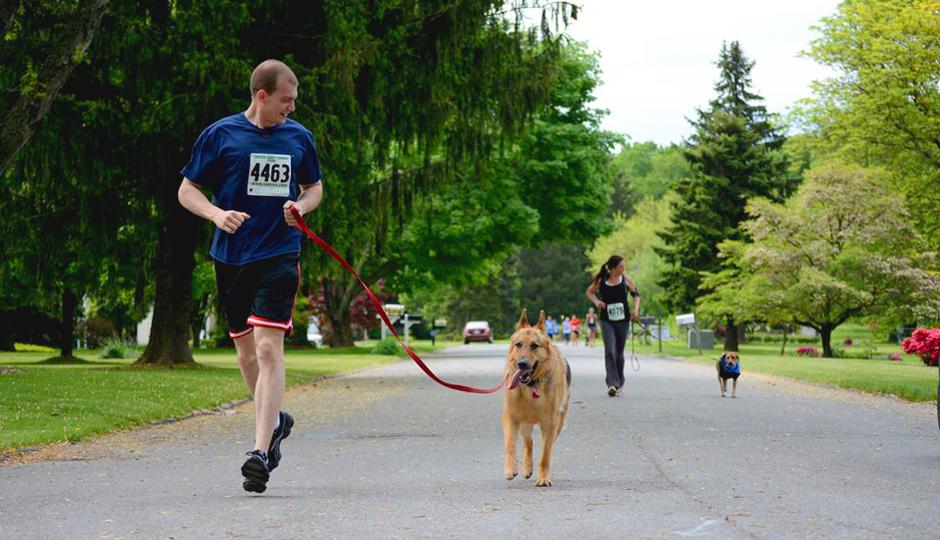 Dog Jog 5K // Photo via Facebook
