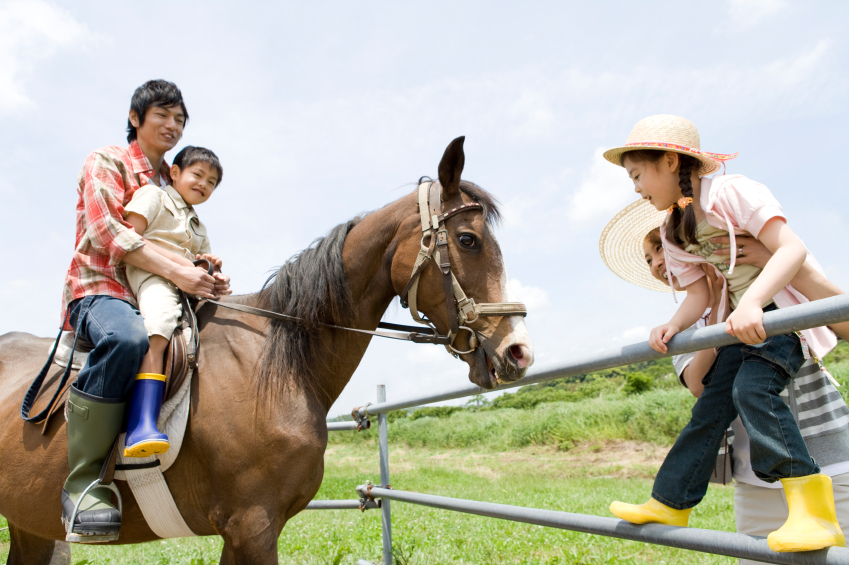 Family experiencing horse riding
