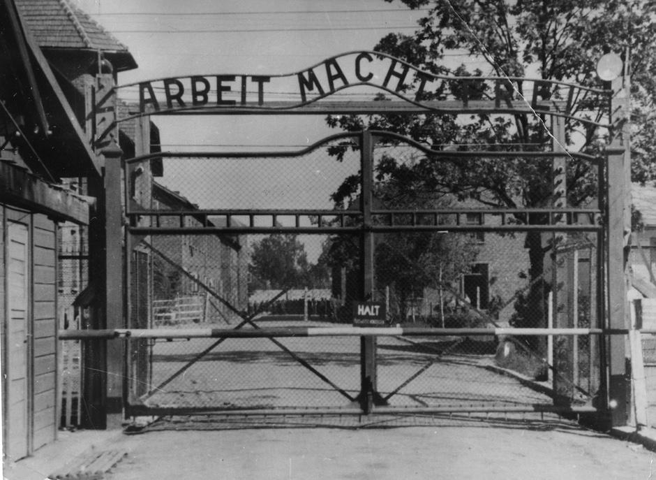 Nazi Investigation