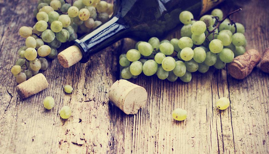 PA Wine Blog 14_image