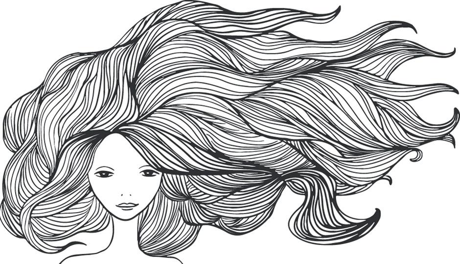 hair-illo