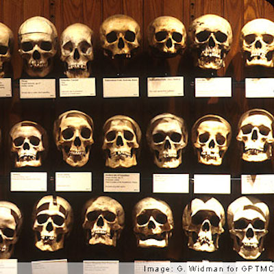 Spine-tinglers line the shelves at the Mütter Museum.