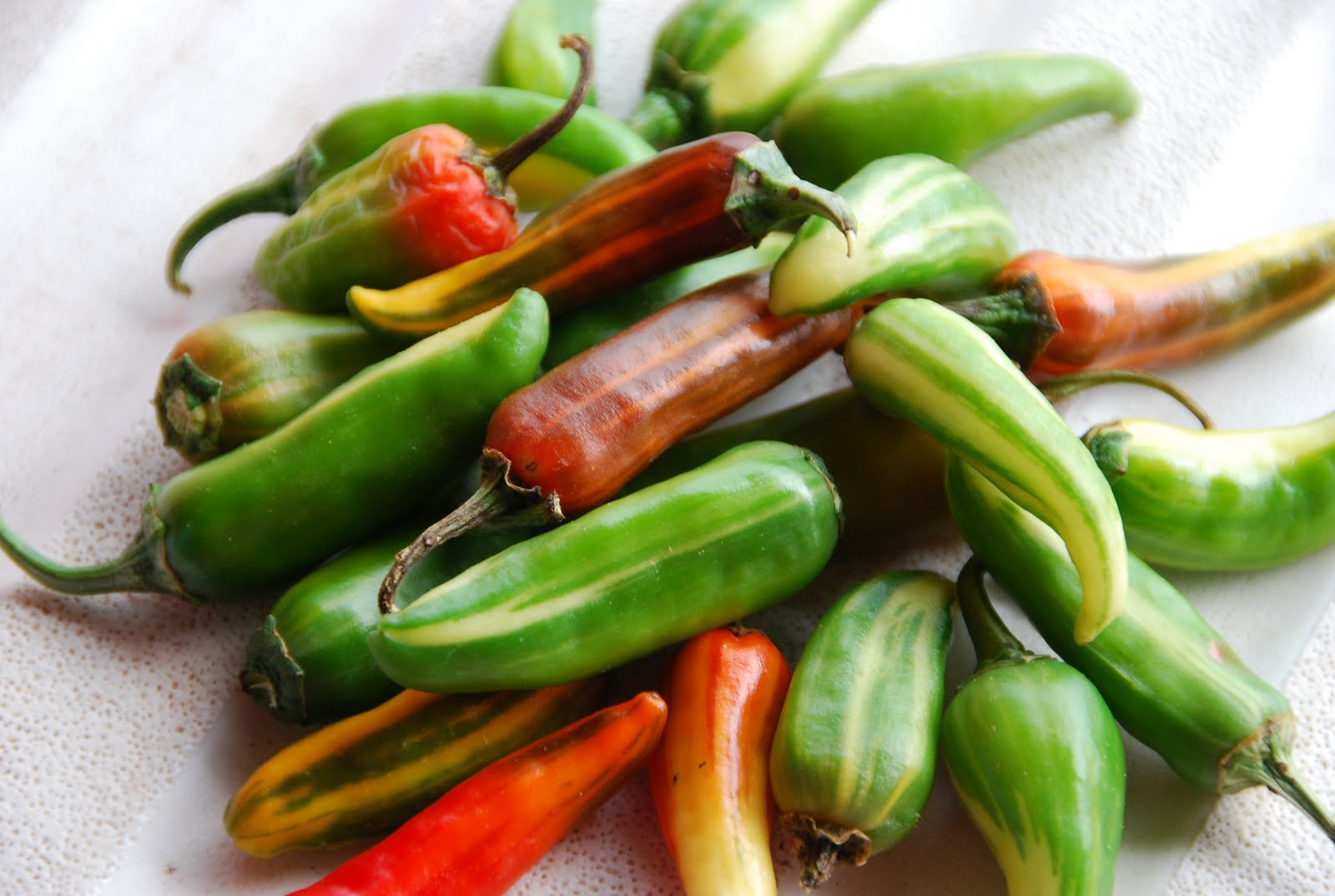 fishpeppers