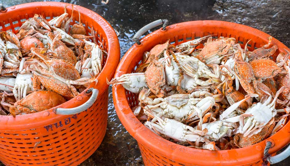 steamed-crabs-940