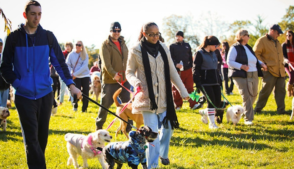 Last year's Bark in the Park walk // Photo courtesy of Amber Adamson
