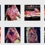 townsend-wentz-instagram-940