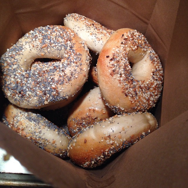 knead bagels square