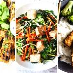 tofu lead