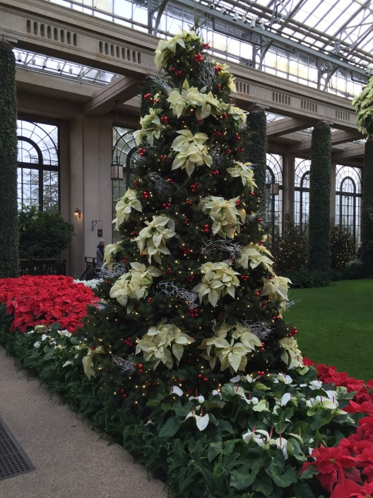Longwood gardens tickets 28 images photos display at for Longwood gardens tickets