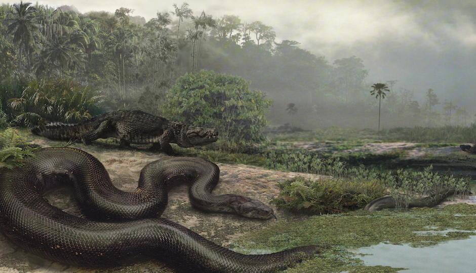 Photo courtesy of Smithsonian