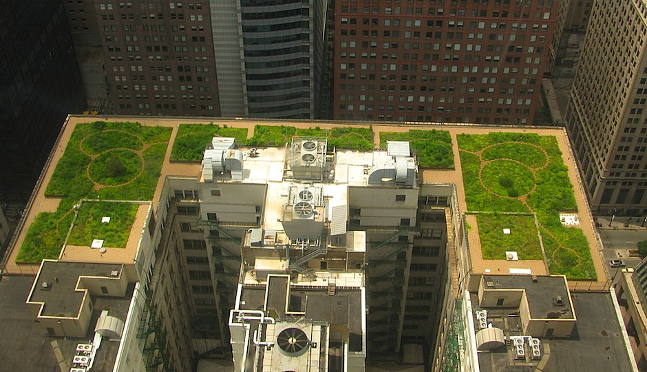 Green roof on Chicago's City Hall | Photo via Wikimedia Commons