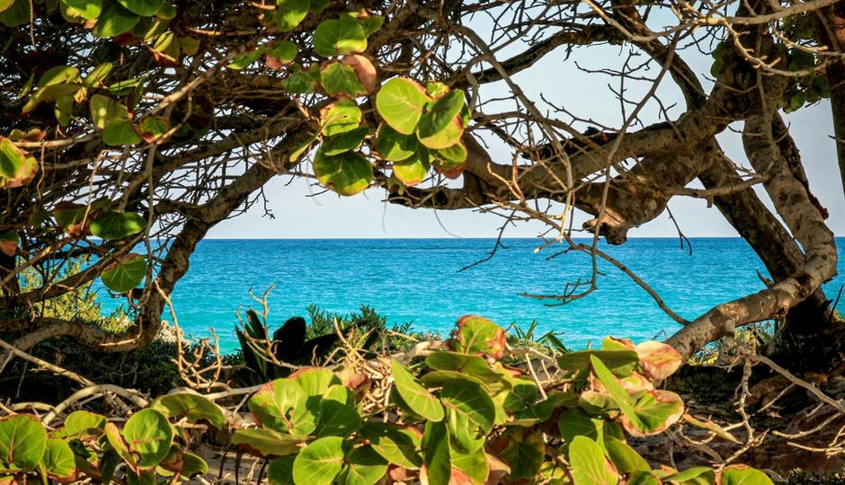Tulum, Mexico   Shutterstock