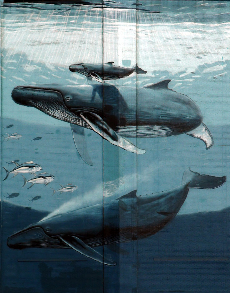 Wyland Whaling Mural
