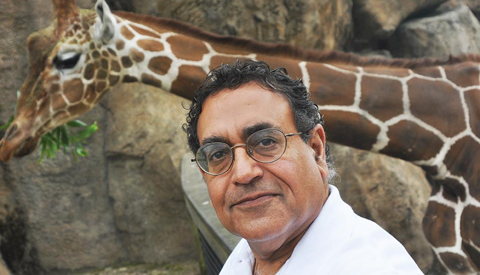 Philadelphia Zoo president/CEO Vik Dewan with eight-year-old male giraffe Gus, May 1, 2015.