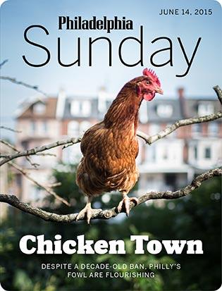 sunday-061415-chickens-315x413