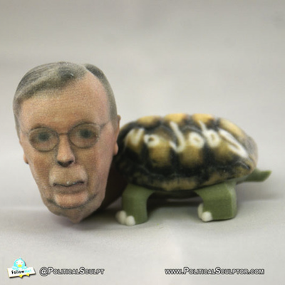 Mr. McConnell as a turtle.