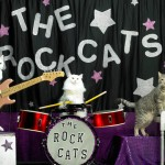 The Rock Cats