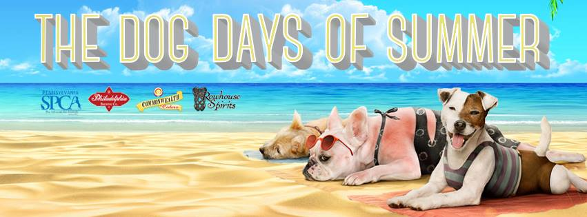 dog days summer johnny brendas