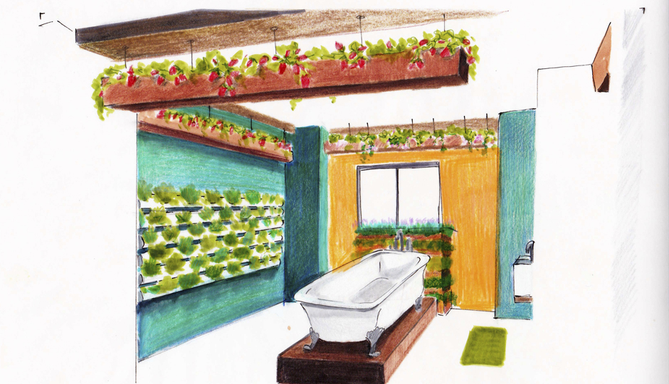 Sketch of pick-your-own prep area at Hydropose Studio | By Jacinthia Clark