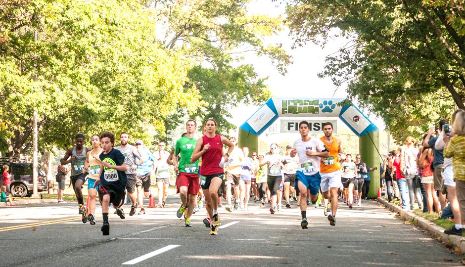 The Rescue Run 5K | Photo via Facebook