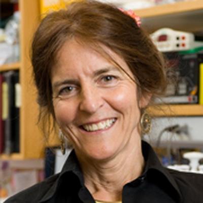 Dr. Jean Bennett