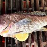 bam-spit-whole-fish-940