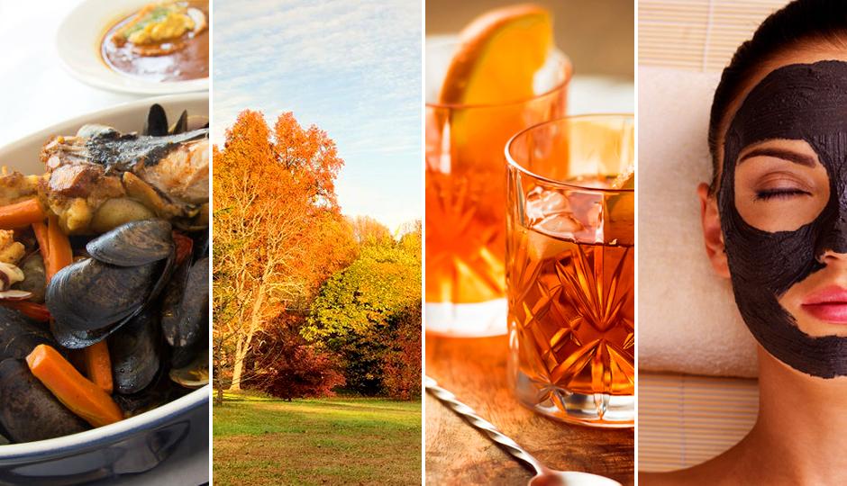 fall guide 2